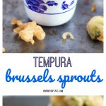 These Tempura Brussels Sprouts are airy, crunchy and salty - a perfect trio!
