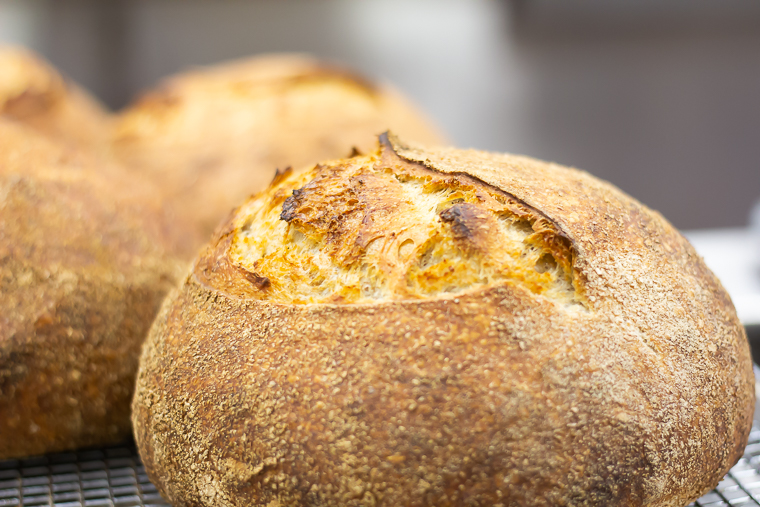a closeup of a crispy outside of a sourdough loaf